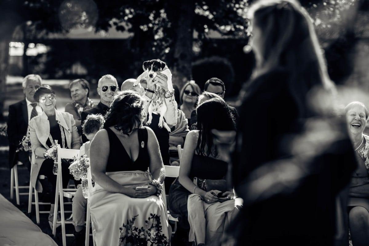 Hund vom Brautpaar wird der Hochzeitsgesellschaft vorgestellt