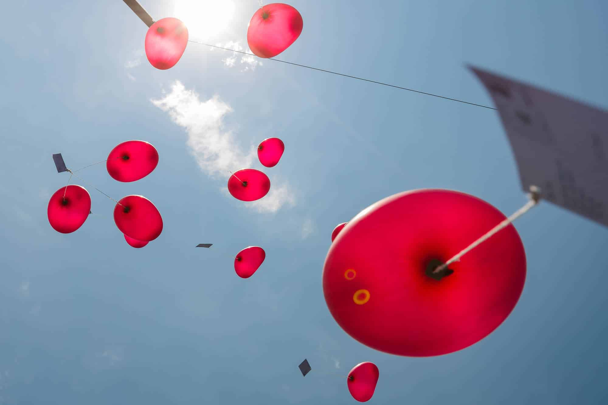 Ballone mit Wunschkarte steigen gen Himmel